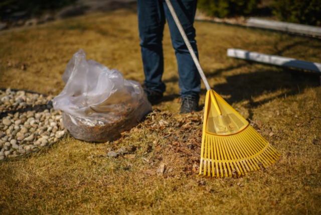 Reduce your yard waste, improve your lawn, help our landfill