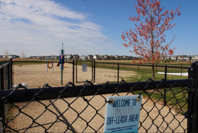Two fenced off-leash dog parks set to reopen on long weekend, Manning Village remains temporarily closed