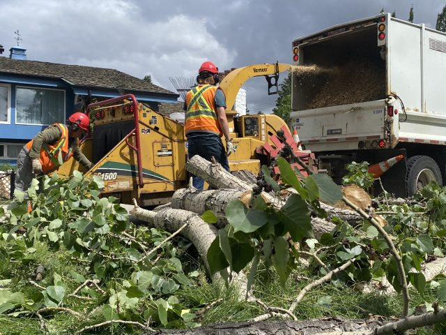 City crews pick up where windstorm left off