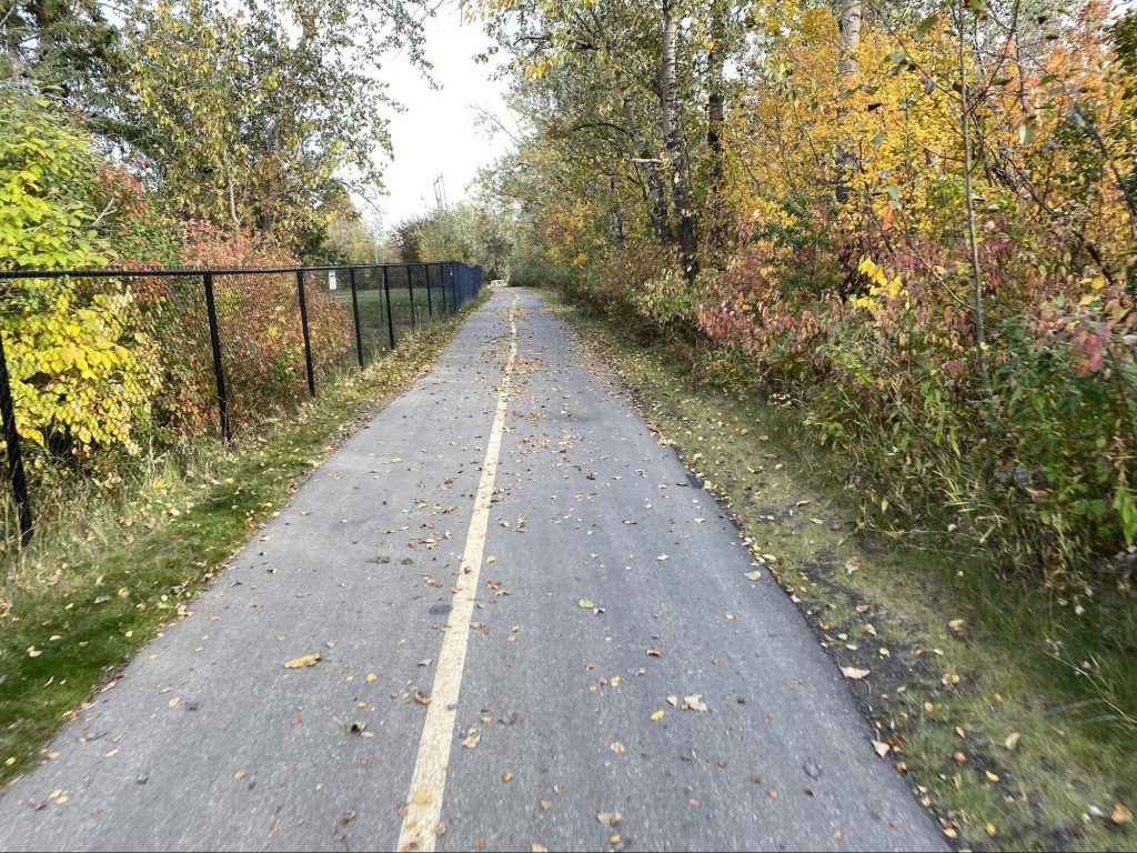 A walking path, black chain link fence on the left, surrounded by Fall foliage