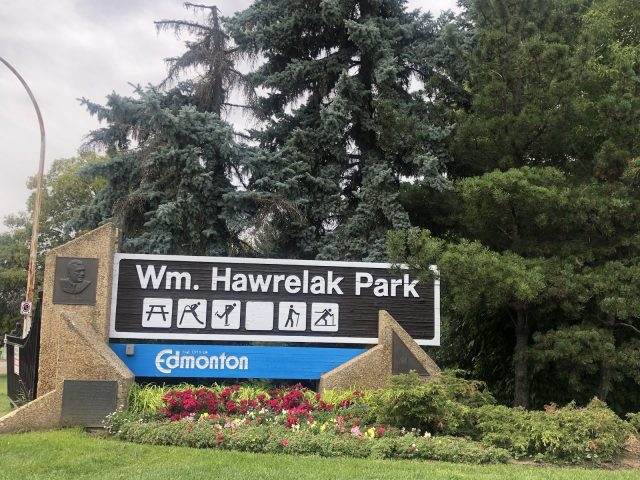 Closer to Home: a picnic in Hawrelak Park