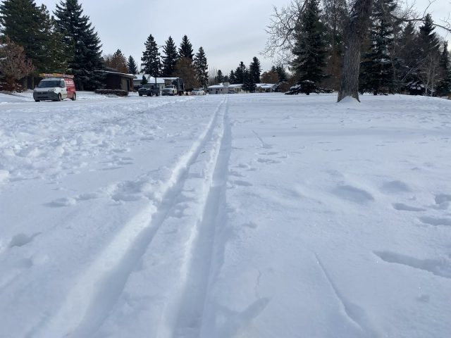 Closer to Home: cross-country skiing in Edmonton