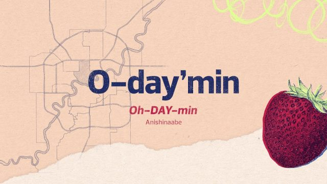 O-day'min Ward: The Strawberry or Heart-berry Oh-DAY-min